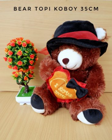 Boneka Teddy Bear Topi Koboy